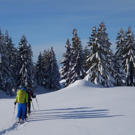Discovery expedition in Chartreuse with a night in an igloo
